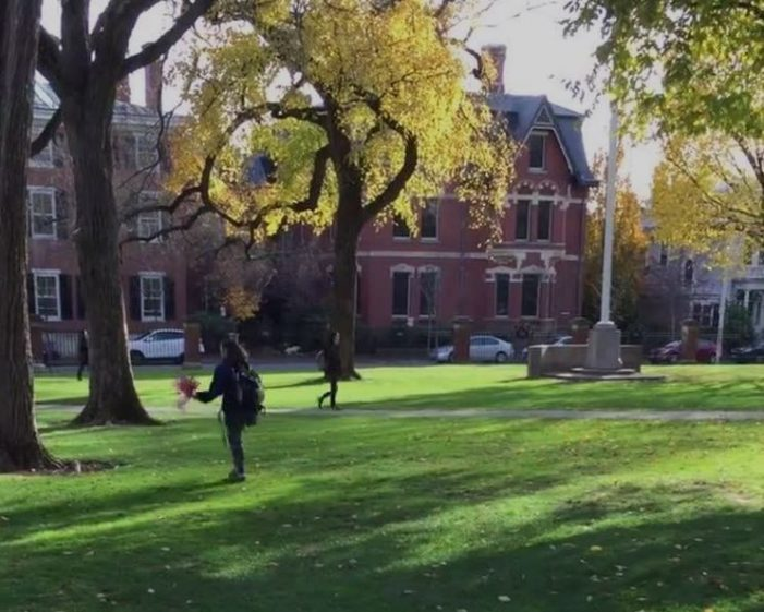 "Brown University ""students"" destroy Veterans Day flags"