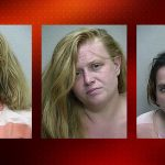 prostitutes, florida, daily lash,
