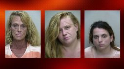 Florida woman agreed to anal, oral sex for purchase of antibiotics