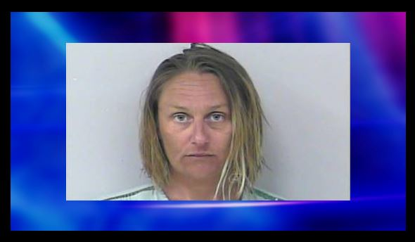 Florida woman removed adult toy from package, used it while still in store