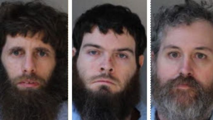 Trio of men sexually abused animals hundreds of times, they say punishment does not fit the crime